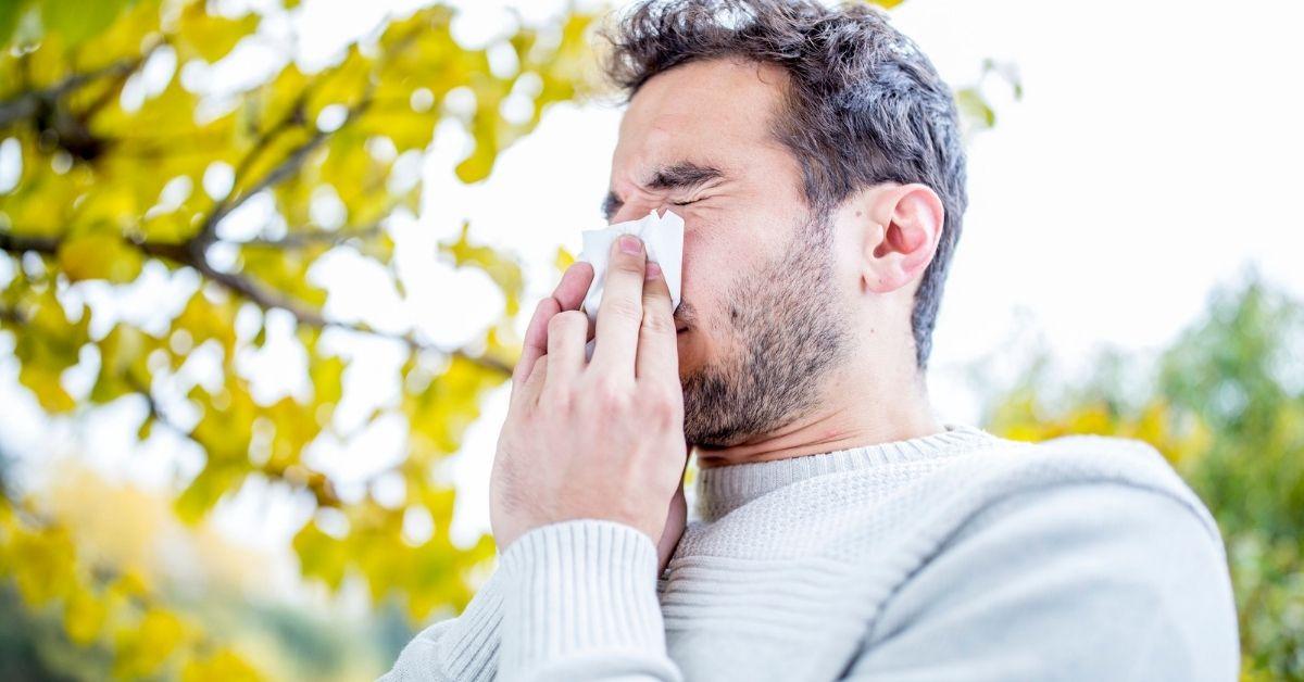 get flu vaccine redditch bishop auckland